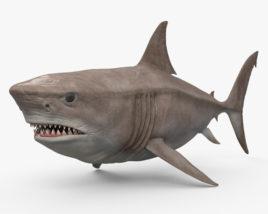 Megalodon HD 3D model