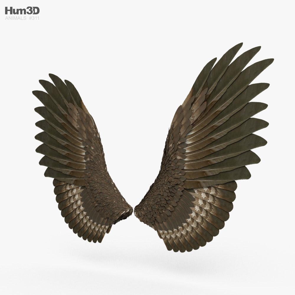 Pair of Bird Wings 3D model