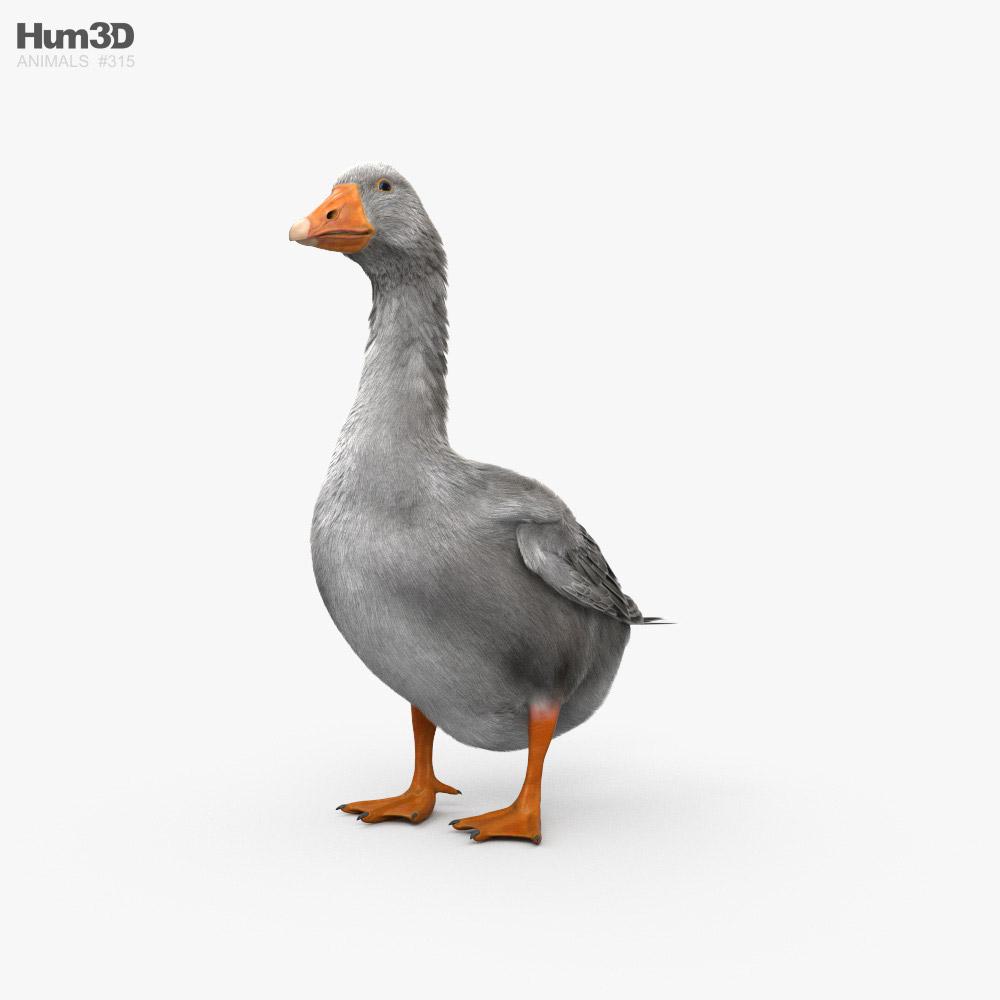 Goose HD 3D model