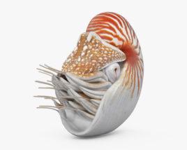 Nautilus HD 3D model