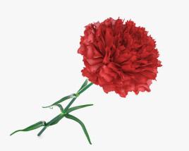 3D model of Carnation