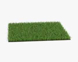 3D model of Grass