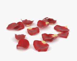3D model of Rose Petals
