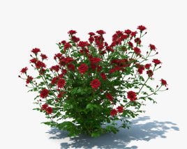 3D model of Rose Bush