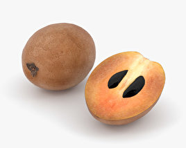 3D model of Sapodilla
