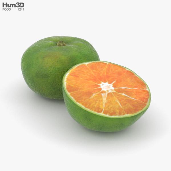Green Tangerine 3D model