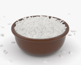 3D model of Rice