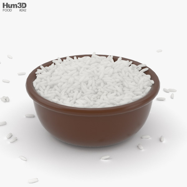 3D model of Rice