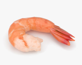 3D model of Shrimp