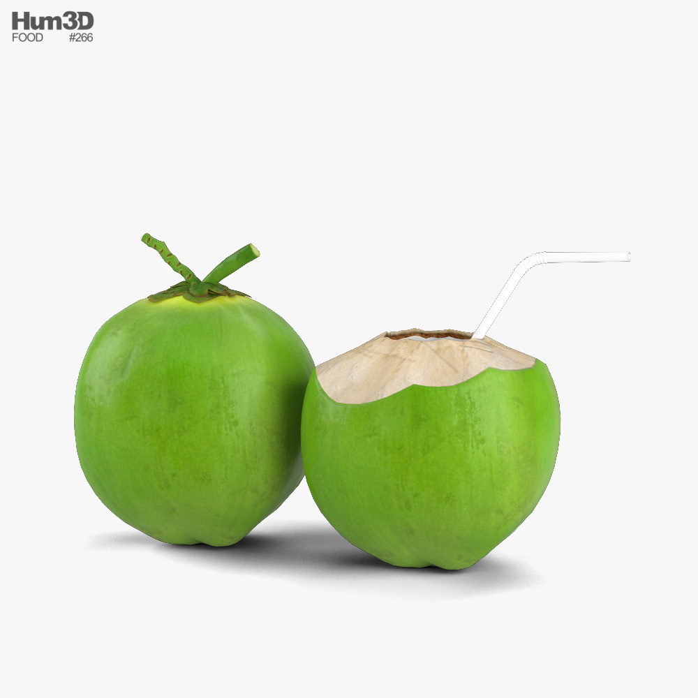 Green Coconut 3D model