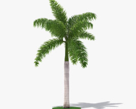 Palm Royal 3D model