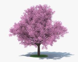 Sakura Tree 3D model