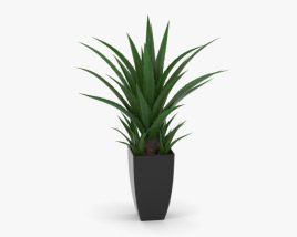 Agave In Decorative Pot 3D model