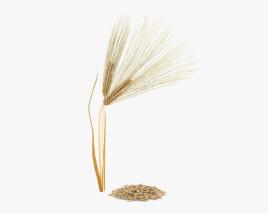 Barley 3D model