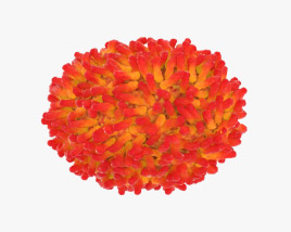 3D model of Smallpox Virus