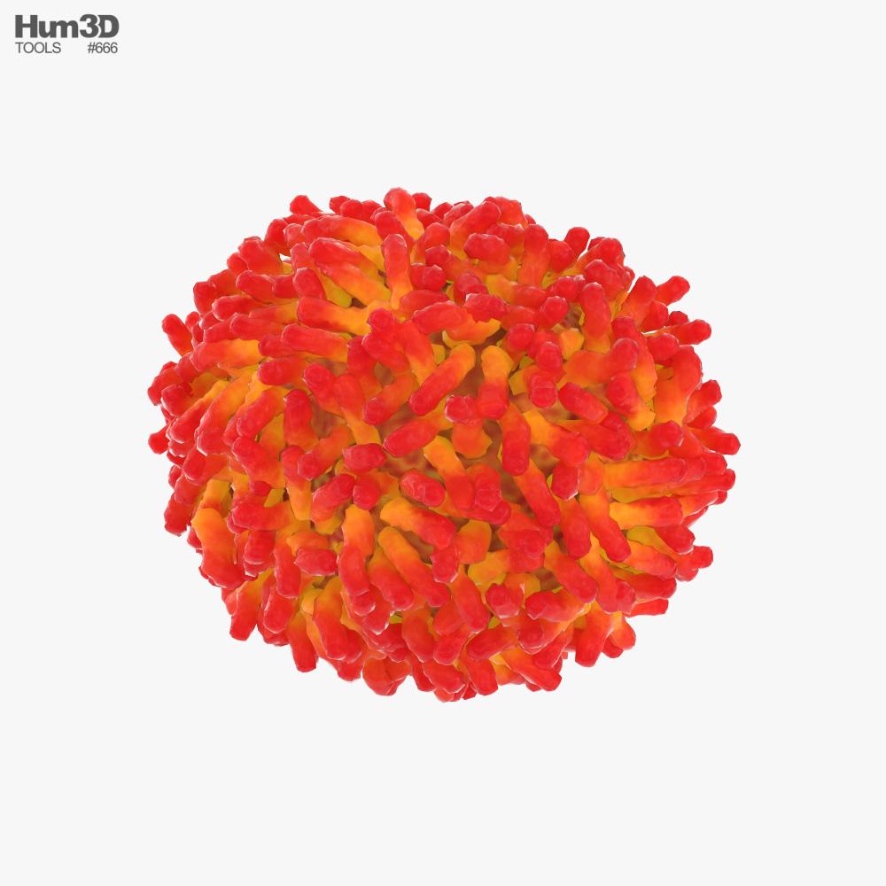 Smallpox Virus 3d model