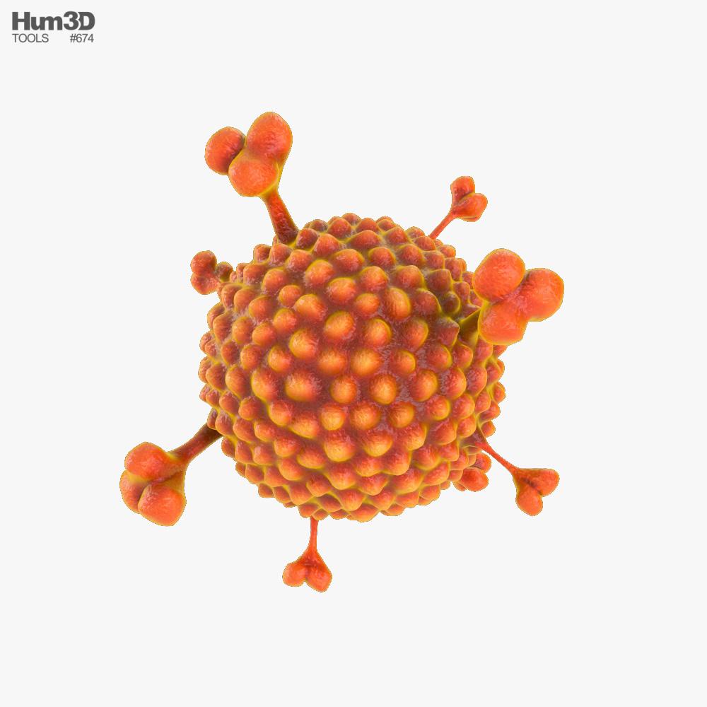 Adenovirus 3D model