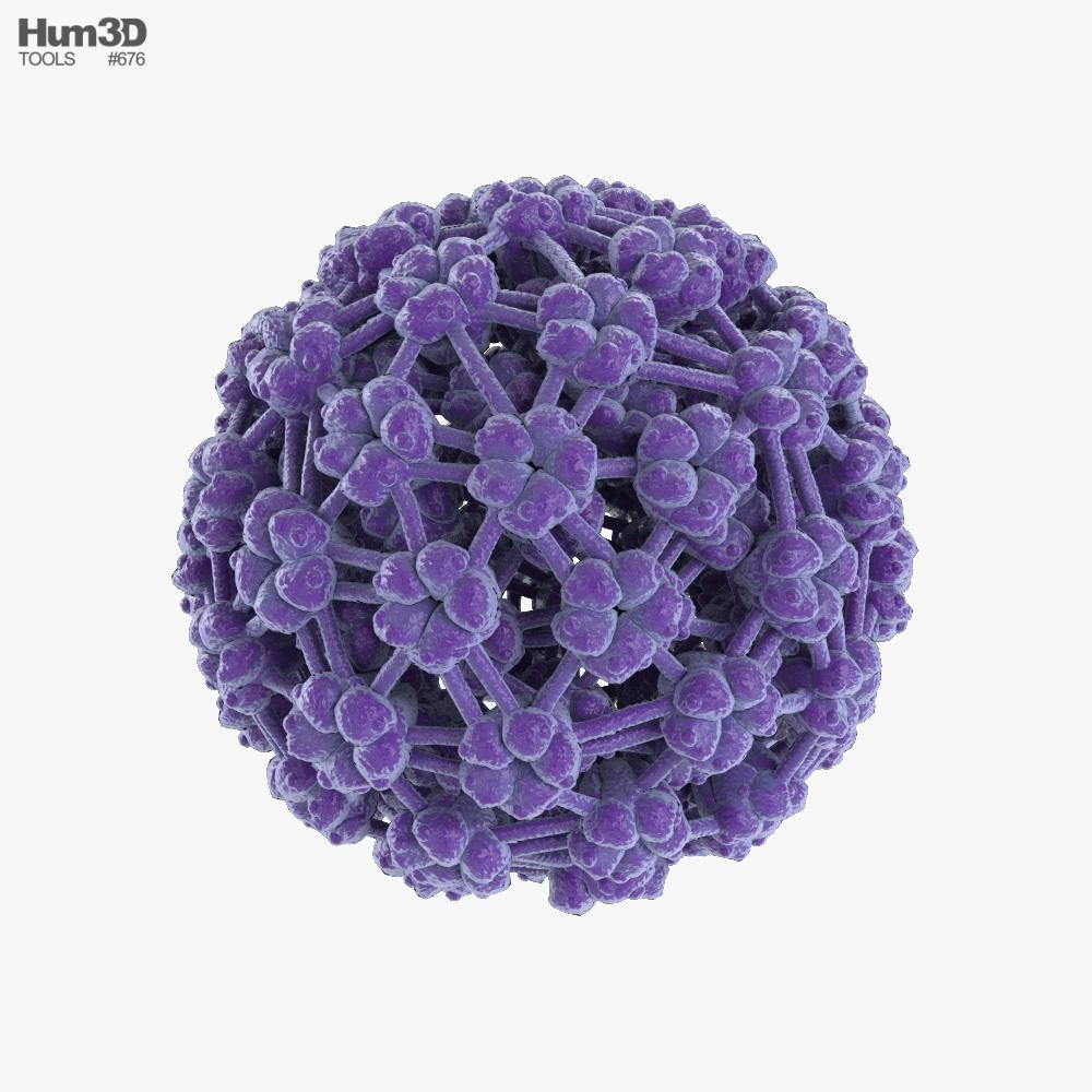 Papilloma Virus 3D model