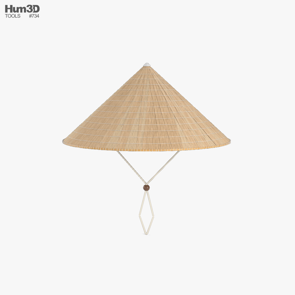Vietnamese Rice Hat 3D model